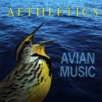avianmusic